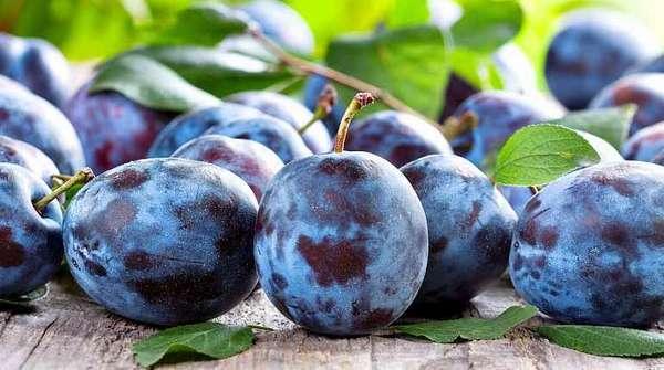 Фиолетовые и синие ягоды для повышения тестостерона