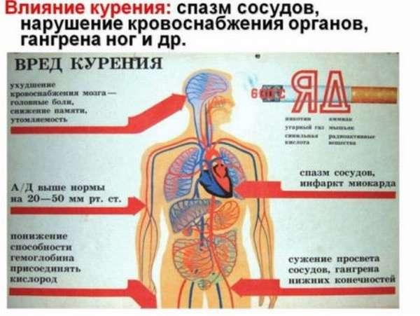 Если от курения начинает болеть сердце — чем это вызвано, какие могут быть осложнения?