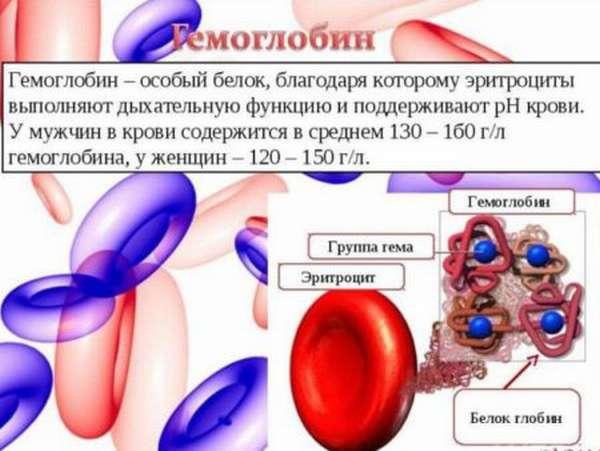 Что означает уровень гемоглобина 170 г/л у мужчин и как снизить показатели?
