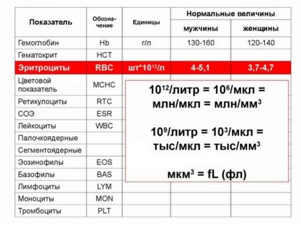 Особенности клинического анализа крови, как проводится расшифровка, нормы показателей у взрослых в таблице