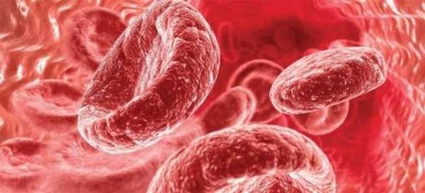 От чего зависят нормы гемоглобина у детей до года? Опасность и последствия отклонений