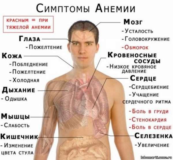Понижение гемоглобина до 90 г/л причины и как можно поднять его уровень?