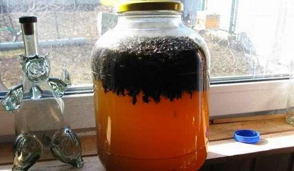 Настойка плодов можжевельника на водке
