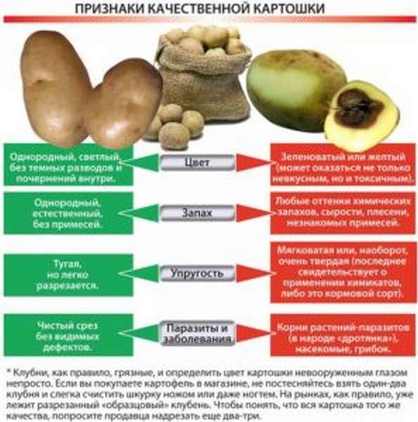 Признаки опасного картофеля