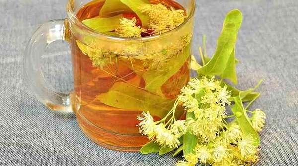 Чай с цветками липы