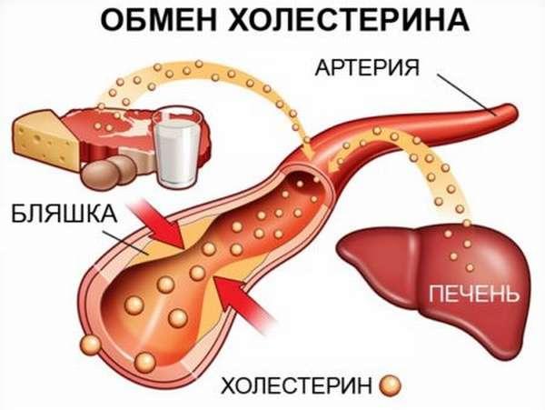 Какой самый высокий уровень холестерина может быть у человека, и чем опасен уровень холестерола, равный 9?