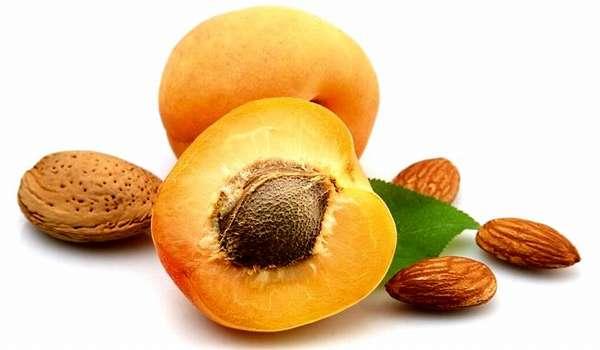 Противопоказания употребления семян абрикоса