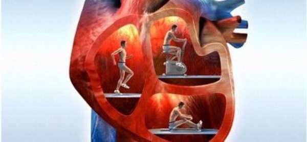 Симптомы и методы диагностики перебоев в работе сердца в состоянии покоя