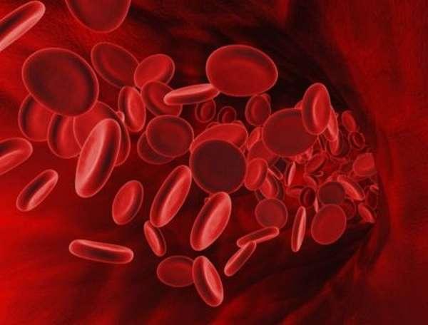 Список часто встречающихся заболеваний сердечно-сосудистой системы