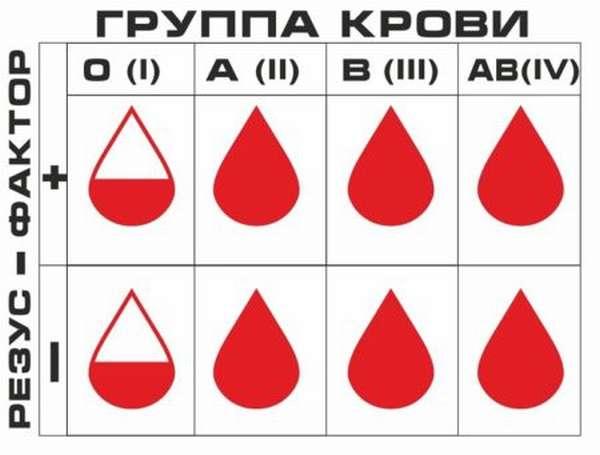 Что нужно знать о совместимости людей по группе крови в сексуальных и семейных отношениях?