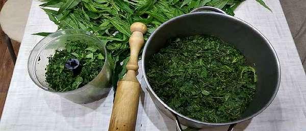 Ферментация иван-чая
