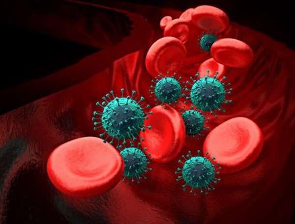Как поднимают тромбоциты в крови после прохождения химиотерапии?