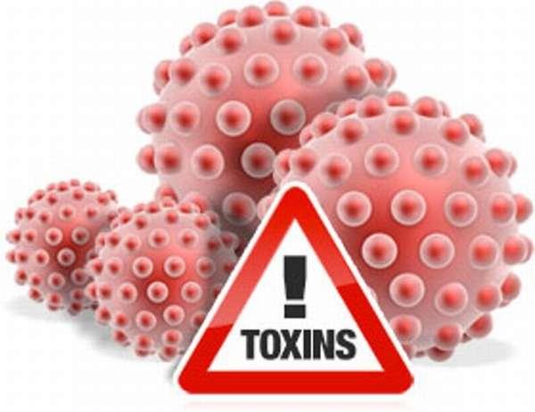 Токсины вредны