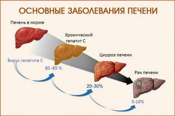 Как сдают биохимический анализ крови: кому показан, как готовиться и что обозначает, причины искажения результатов