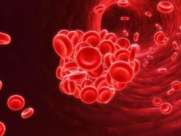 Симптомы и первые признаки образования тромба, методы профилактики, лечение, прогноз