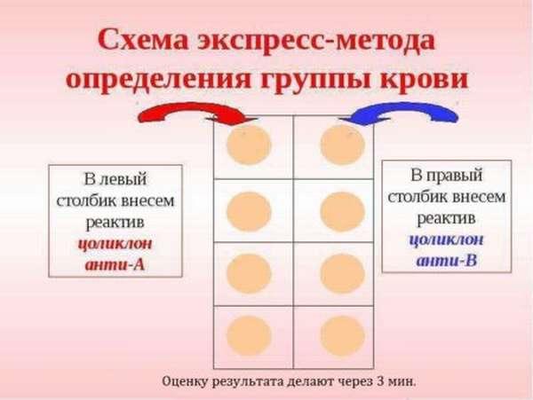 С помощью какого оснащения и как в домашних условиях определяют группу крови и резус-фактор?
