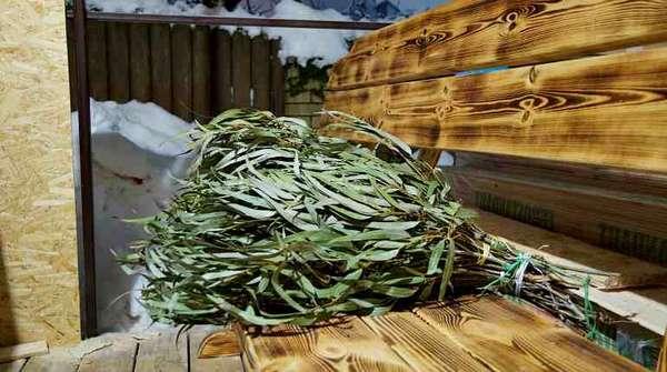 Веник для бани из листьев эвкалипта