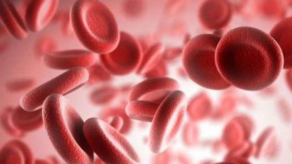 Чем так опасны повышенные тромбоциты у ребенка, и что делать в такой ситуации, разновидности тромбоцитоза, методы диагностики, последствия?