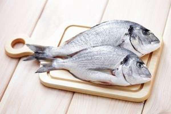 Постепенно вводите рыбу в рацион собаки