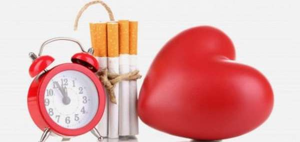 Как укрепляют сердечную мышцу в домашних условиях с помощью физических нагрузок?