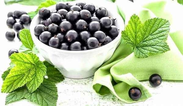 Народные рецепты лечения смородиной
