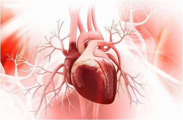 Причины инфаркта в 20 лет, симптомы патологического состояния, оказание помощи