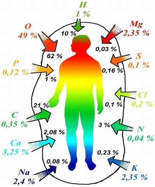 Показания к ионограмме, что показывает и почему повышается уровень микроэлементов?