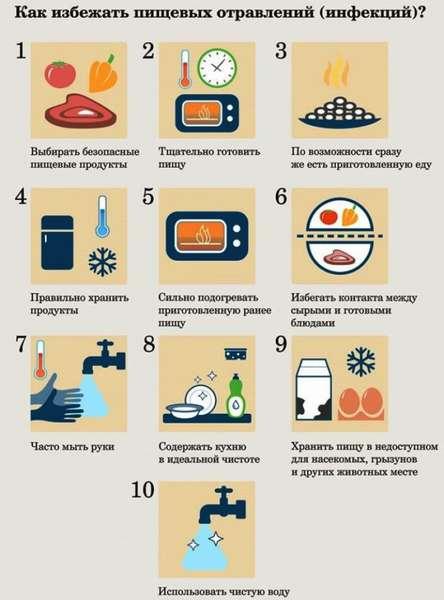 Пищевые бактериальные отравления: виды и их лечение
