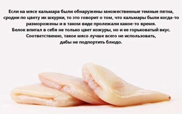 Отравление кальмарами: симптомы и профилактика