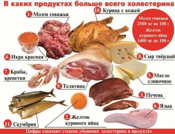 Принципы диеты при повышенном холестерине, разрешенные и запрещенные продукты