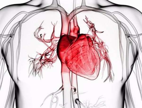 В чем особенность мелкоочагового инфаркта, симптоматика, диагностика и лечение