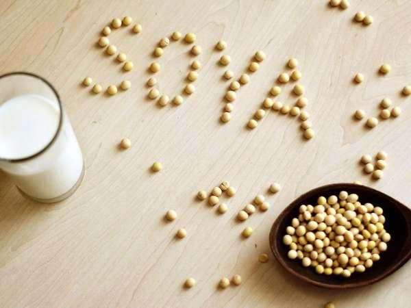 Соя: польза и вред для здоровья человека