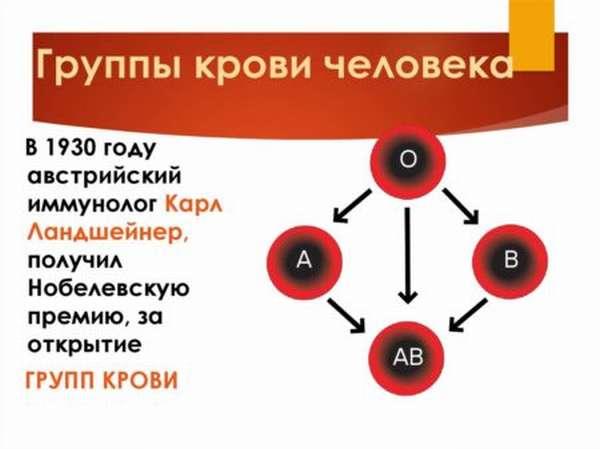 Откуда берут кровь на определение группы крови и резус-фактора, правила