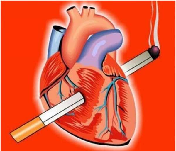 Инфаркт миокарда, можно ли курить после приступа, как сигареты влияют на сердце и сосуды