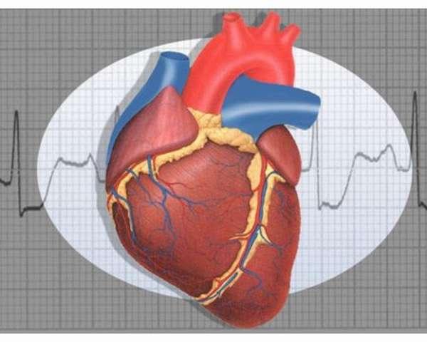 Прием алкоголя после инфаркта, о чем следует помнить, рекомендации и советы врачей