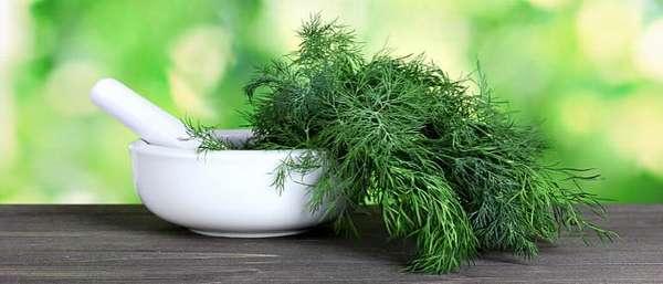 Трава в кадке