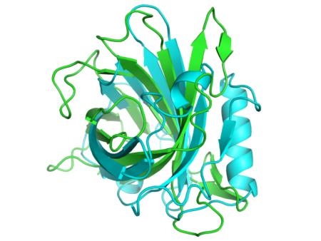 Превышение общего белка в крови, причины возникновения данного состояния, методы диагностики и лечения