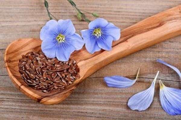 Семена льна свойства