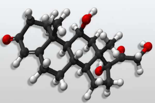 Зачем и как проводить сдачу анализа крови на кортизол?