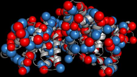 Нормы и отклонения белковых фракций в биохимическом анализе крови