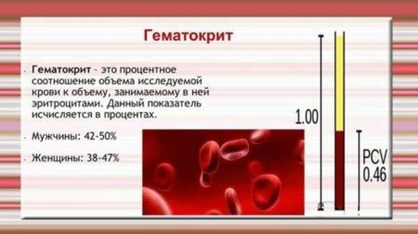 Условно-нормальный уровень гематокрита, показания к анализу, нюансы проведения