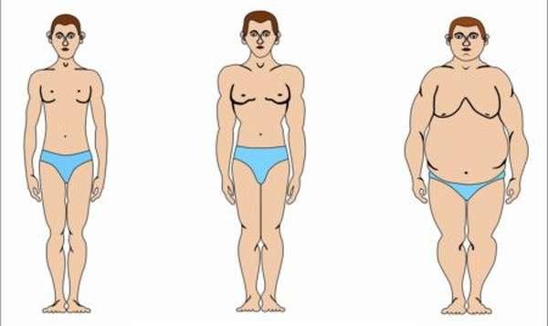Особенности 2 группы крови с положительным резусом, характеристики и предрасположенность к заболеваниям, риск для здоровья