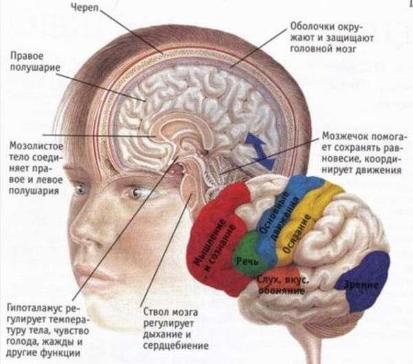 Инсульт с парализацией правой стороны тела