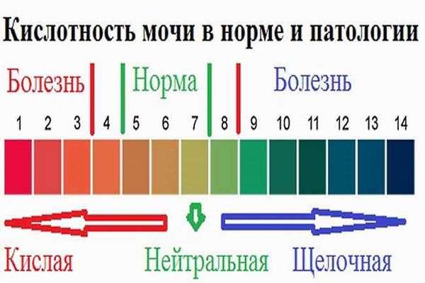 Баланс содержания кислот и щелочей