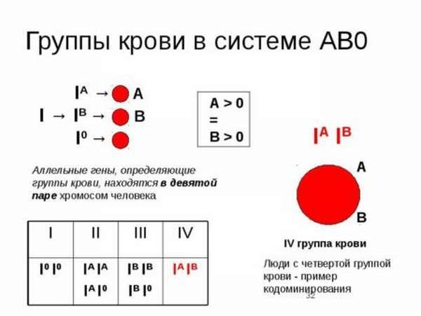Как определяют группу крови стандартными сыворотками, методы и особенности проведения