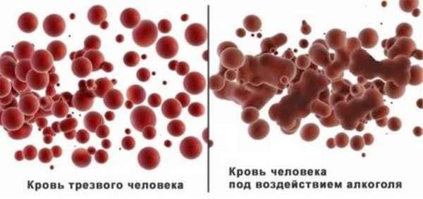 Отклонение от нормы лейкоцитов и тромбоцитов, основные функции клеток