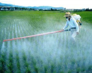Отравление синильной кислотой: причины, признаки, первая помощь