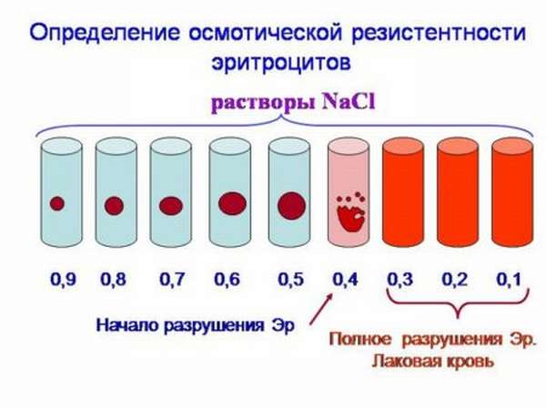 Симптомы осмотической резистентности эритроцитов и метод определения показателей