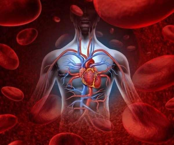 Из-за чего может происходить повышение эритроцитов в крови, распространенные причины