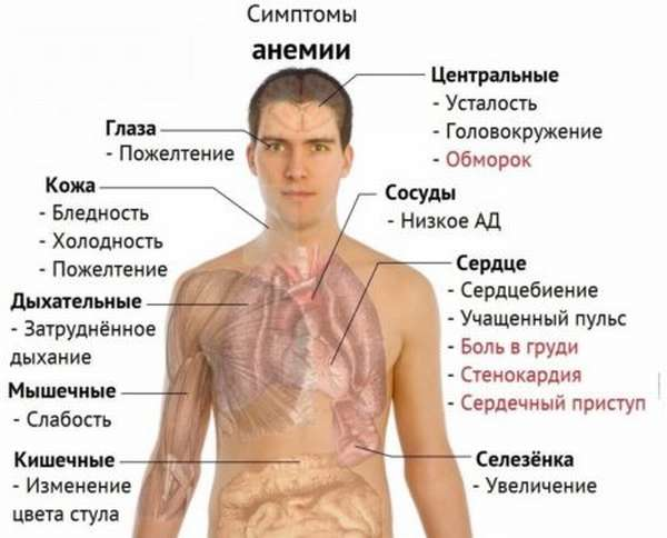 Как повышают уровень гемоглобина быстро: народные средства, методы диагностики